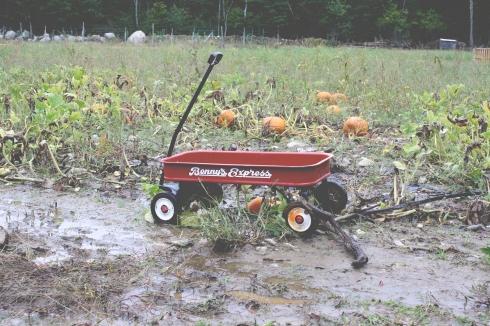 wagon mud