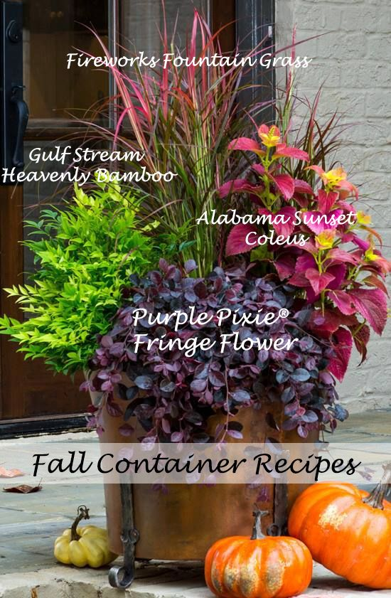 fall container ideas4