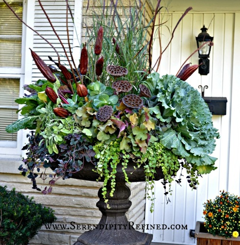 fall container ideas5