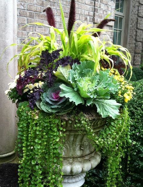 fall container ideas6