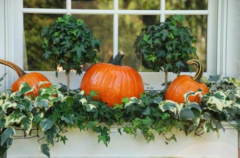 halloween planter ideas