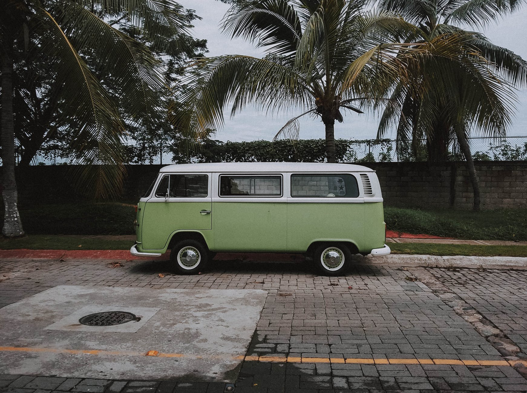 green volkswagen transporter van parked under coconut trees